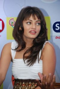 Telugu Actress Sneha Ullal New Hot Stills Photogallery glamour images