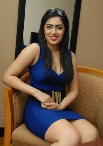 Hot Heroine Nikesha New Photo shot in Bule Dress hot photos