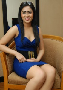 Hot Heroine Nikesha New Photo shot in Bule Dress wallpapers