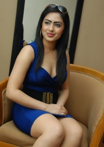 Hot Heroine Nikesha New Photo shot in Bule Dress Photoshoot images