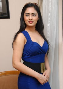 Hot Heroine Nikesha New Photo shot in Bule Dress navel show