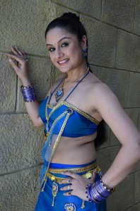 sonia agarwal , sonia agarwal spicy photo gallery