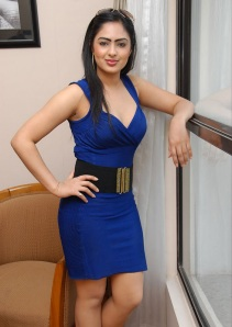 Hot Heroine Nikesha New Photo shot in Bule Dress glamour images