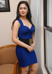 Hot Heroine Nikesha New Photo shot in Bule Dress cleavage
